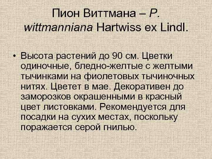 Пион Виттмана – P. wittmanniana Hartwiss ex Lindl. • Высота растений до 90 см.
