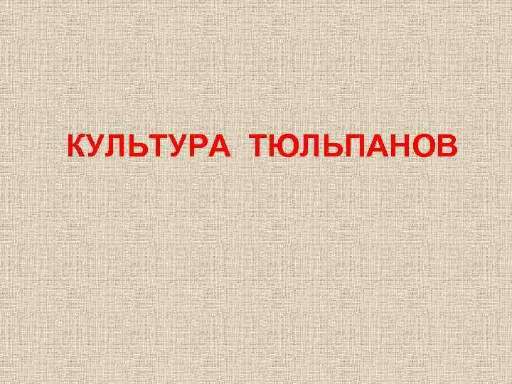 КУЛЬТУРА ТЮЛЬПАНОВ