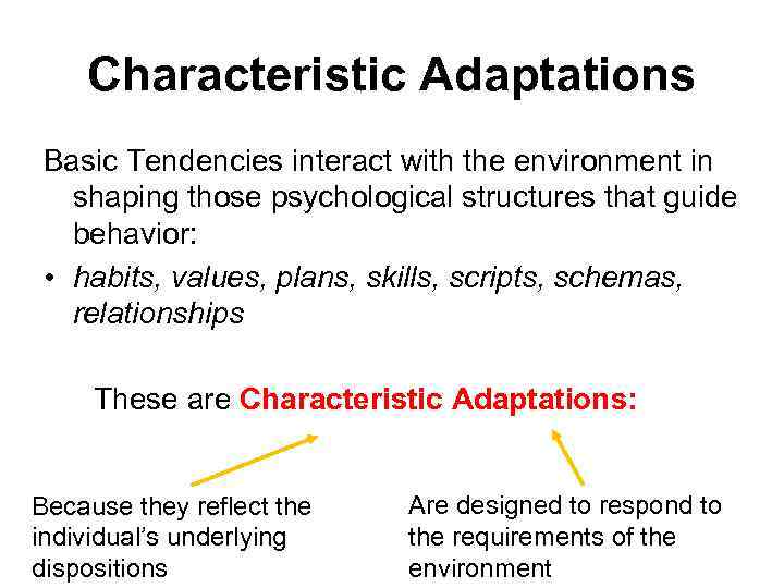 Characteristic Adaptations Basic Tendencies interact with the environment in shaping those psychological structures that
