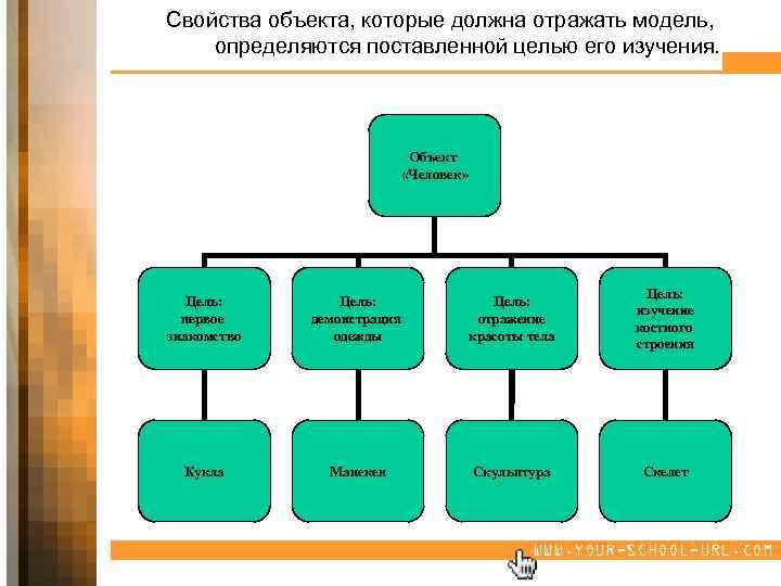 Свойства объекта, которые должна отражать модель, определяются поставленной целью его изучения. Объект «Человек» Цель: