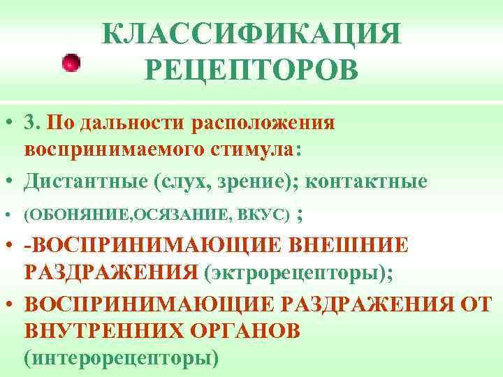 КЛАССИФИКАЦИЯ РЕЦЕПТОРОВ • 3. По дальности расположения воспринимаемого стимула: • Дистантные (слух, зрение); контактные