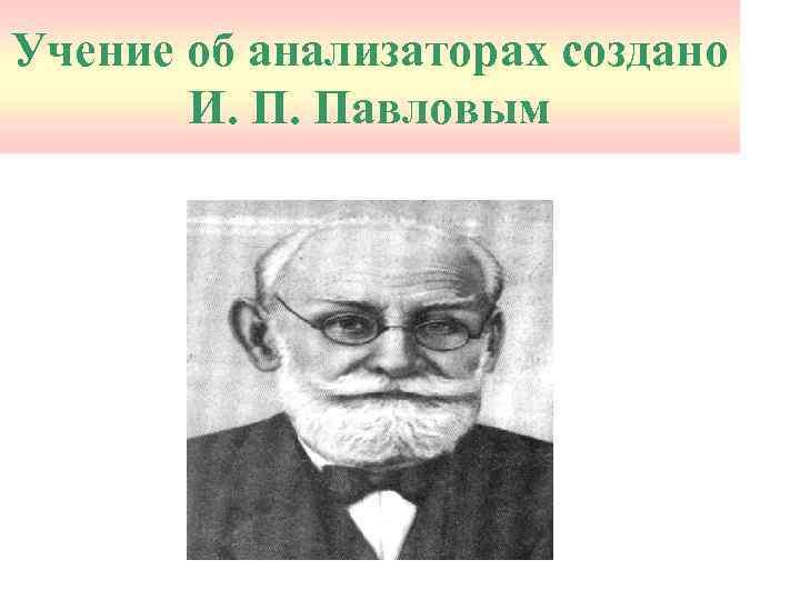 Учение об анализаторах создано И. П. Павловым