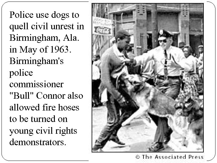 Police use dogs to quell civil unrest in Birmingham, Ala. in May of 1963.