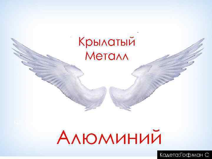 Крылатый Металл Крылатый Алюминий Кадета: Гофман С