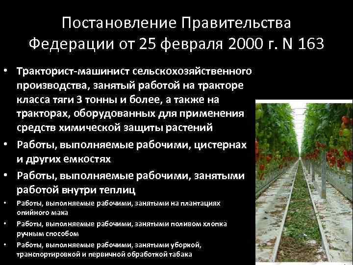 Постановление Правительства Федерации от 25 февраля 2000 г. N 163 • Тракторист-машинист сельскохозяйственного производства,