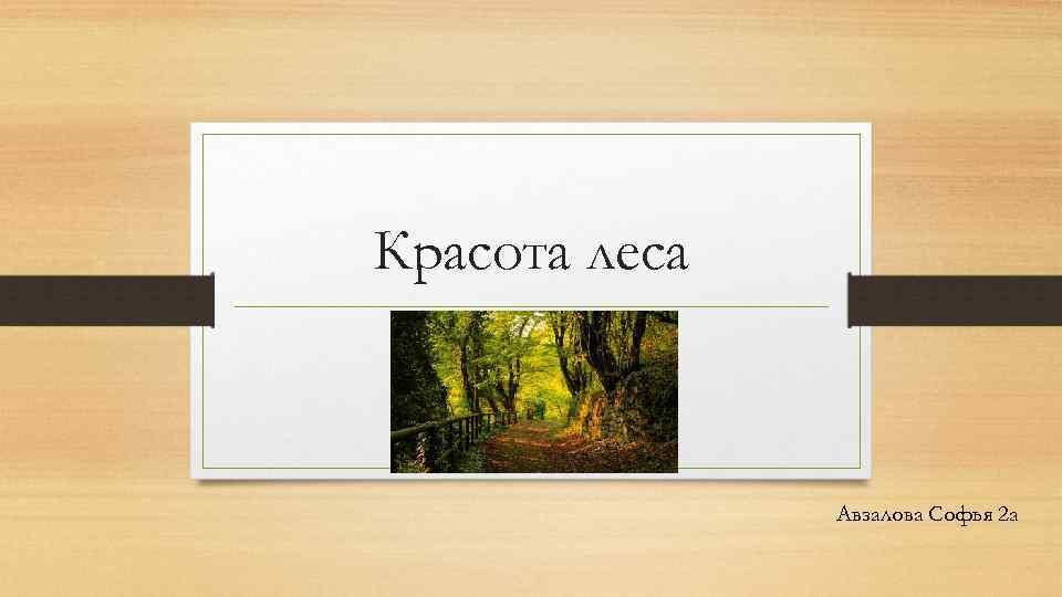 Красота леса Авзалова Софья 2 а