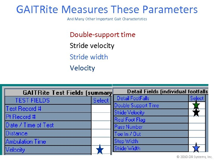 GAITRite Measures These Parameters And Many Other Important Gait Characteristics Double-support time Stride velocity