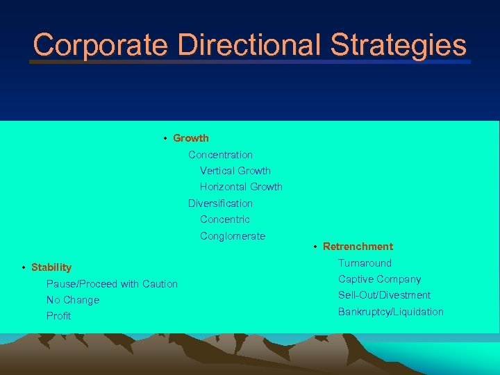 Corporate Directional Strategies • Growth Concentration Vertical Growth Horizontal Growth Diversification Concentric Conglomerate •