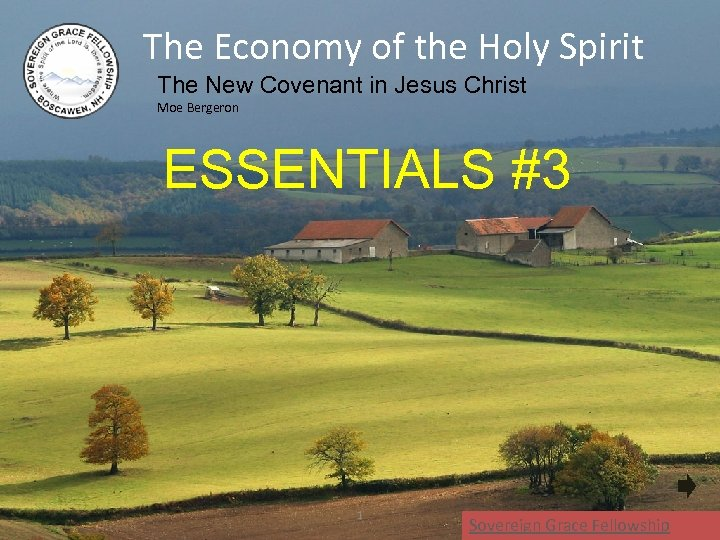 The Economy of the Holy Spirit The New Covenant in Jesus Christ Moe Bergeron