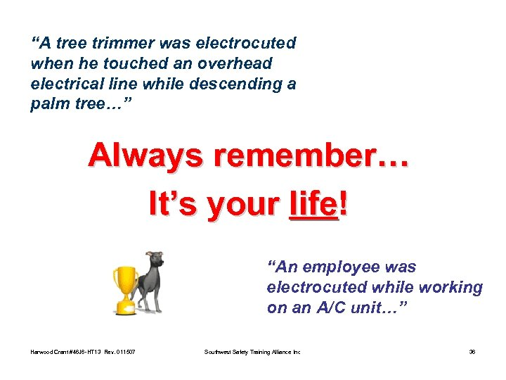 """A tree trimmer was electrocuted when he touched an overhead electrical line while descending"