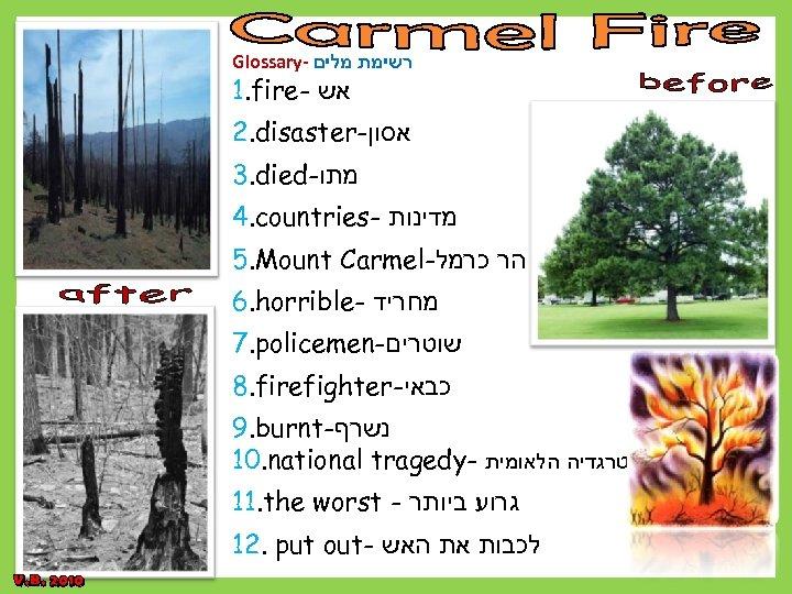 Glossary- רשימת מלים 1. fire- אש 2. disaster- אסון 3. died- מתו 4. countries-