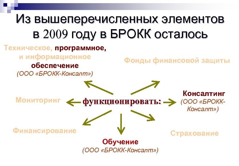 Из вышеперечисленных элементов в 2009 году в БРОКК осталось Техническое, программное, и информационное обеспечение