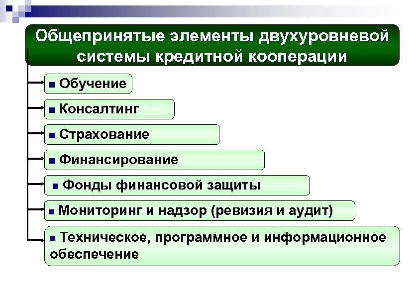 Общепринятые элементы двухуровневой системы кредитной кооперации n Обучение n Консалтинг n Страхование n Финансирование