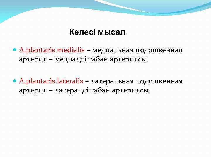 Келесі мысал А. plantaris medialis – медиальная подошвенная артерия – медиалді табан артериясы А.