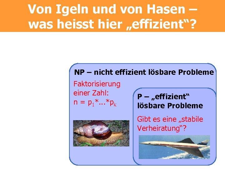 """Von Igeln und von Hasen – was heisst hier """"effizient""""? NP – nicht effizient"""
