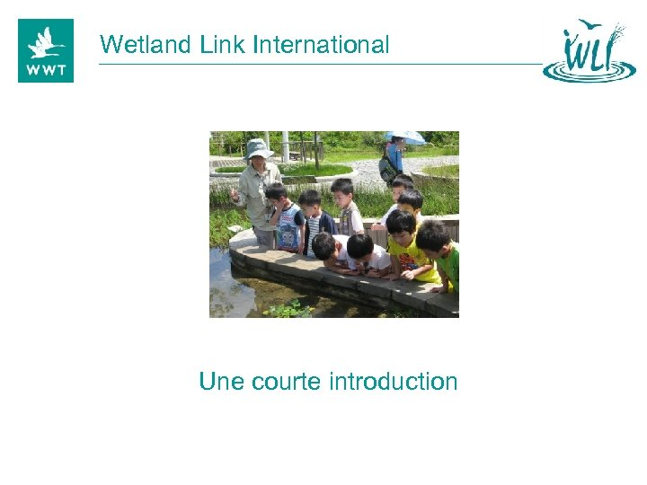 Wetland Link International Une courte introduction