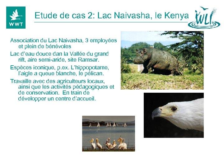 Etude de cas 2: Lac Naivasha, le Kenya Association du Lac Naivasha, 3 employées