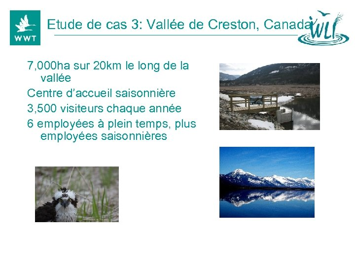 Etude de cas 3: Vallée de Creston, Canada 7, 000 ha sur 20 km
