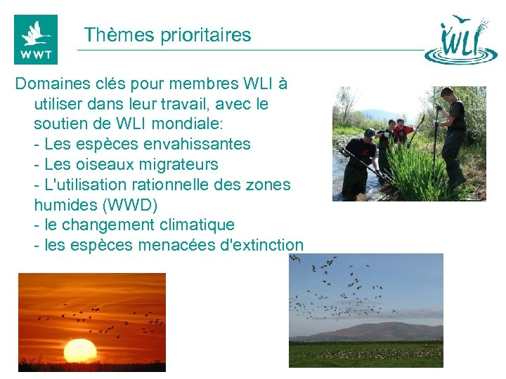Thèmes prioritaires Domaines clés pour membres WLI à utiliser dans leur travail, avec le