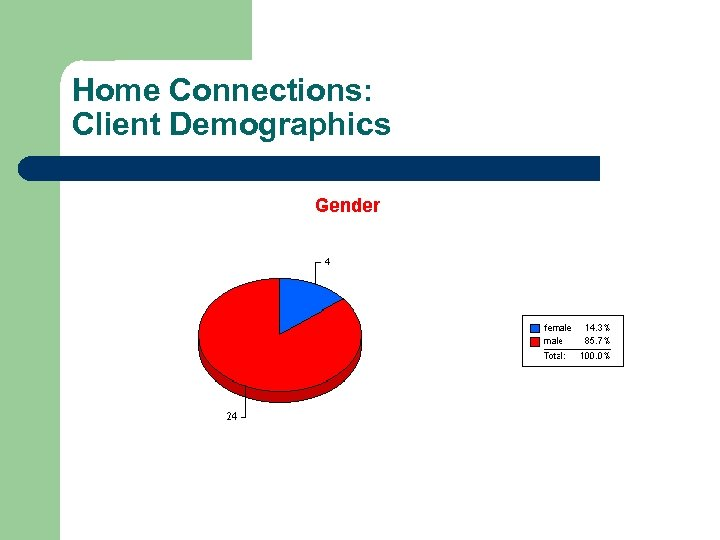 Home Connections: Client Demographics