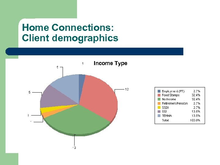 Home Connections: Client demographics Income Type
