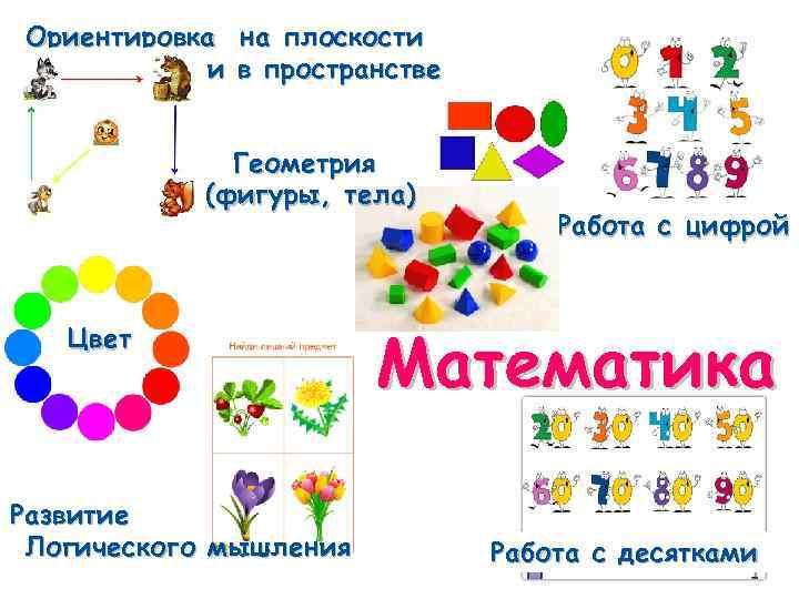 Ориентировка на плоскости и в пространстве Геометрия (фигуры, тела) Цвет Развитие Логического мышления Работа