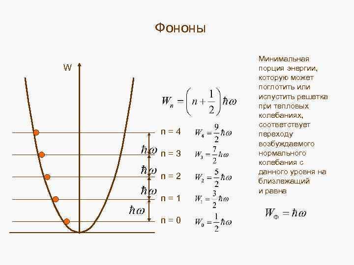 Фононы W n = 4 n = 3 n = 2 n = 1