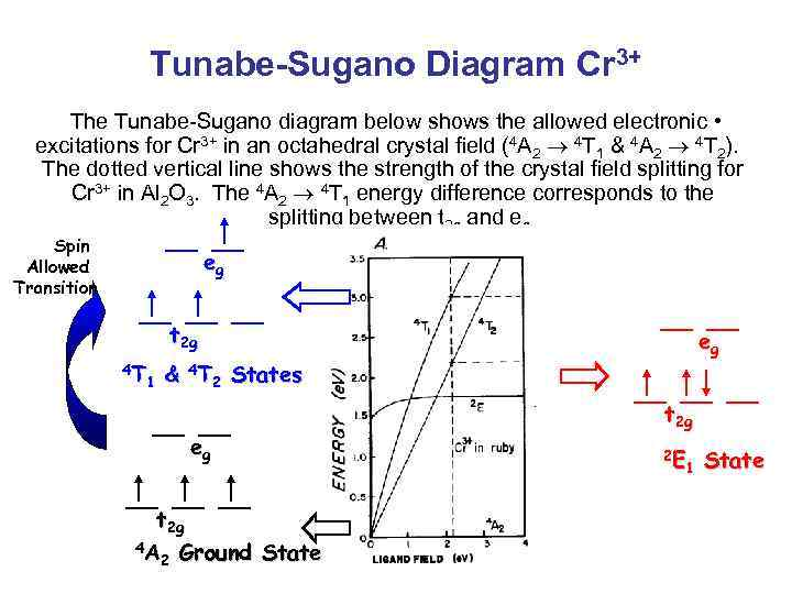 Tunabe-Sugano Diagram Cr 3+ The Tunabe-Sugano diagram below shows the allowed electronic • excitations