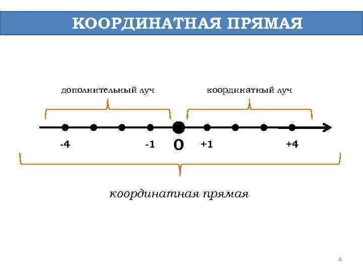 координатная прямая с картинками демисезонное велюра классическом