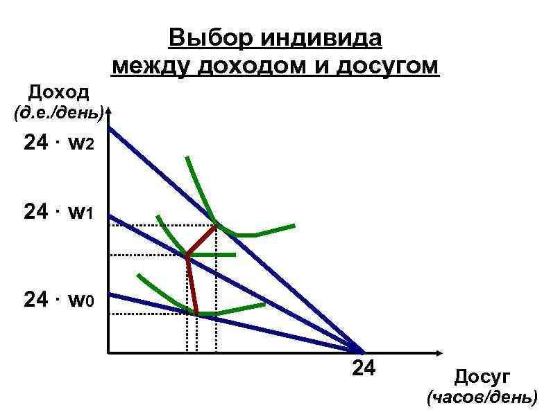 Выбор индивида между доходом и досугом Доход (д. е. /день) 24 · w 2