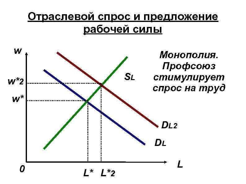 Отраслевой спрос и предложение рабочей силы w SL w*2 w* Монополия. Профсоюз стимулирует спрос