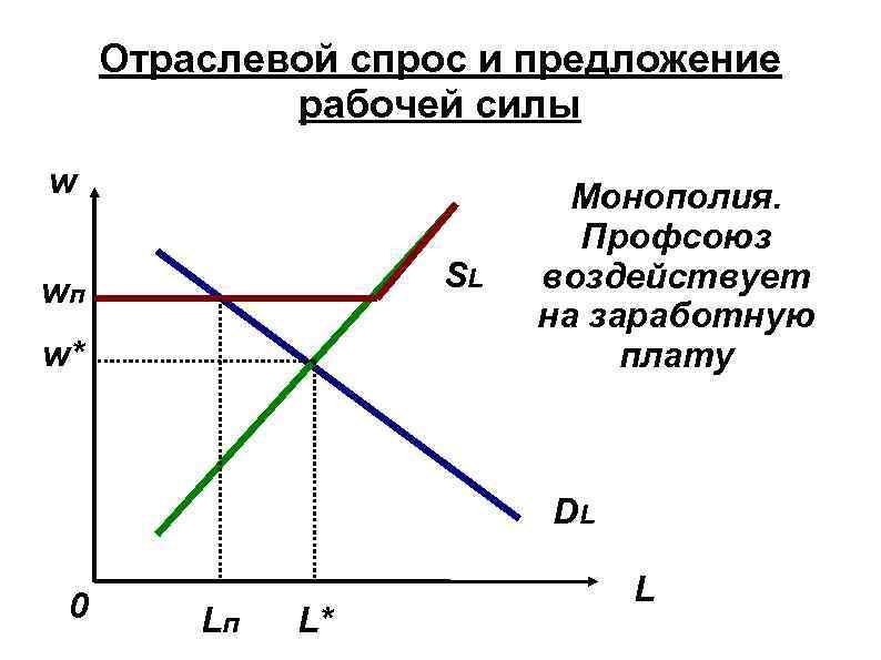 Отраслевой спрос и предложение рабочей силы w SL wп w* Монополия. Профсоюз воздействует на