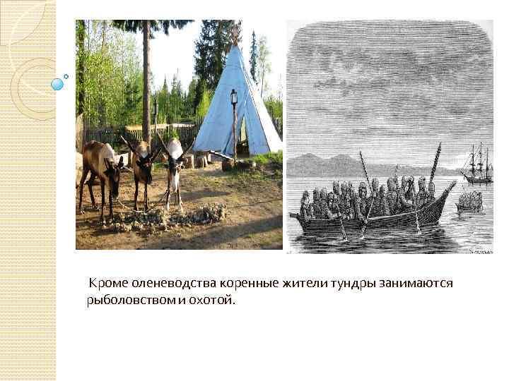 Кроме оленеводства коренные жители тундры занимаются рыболовством и охотой.