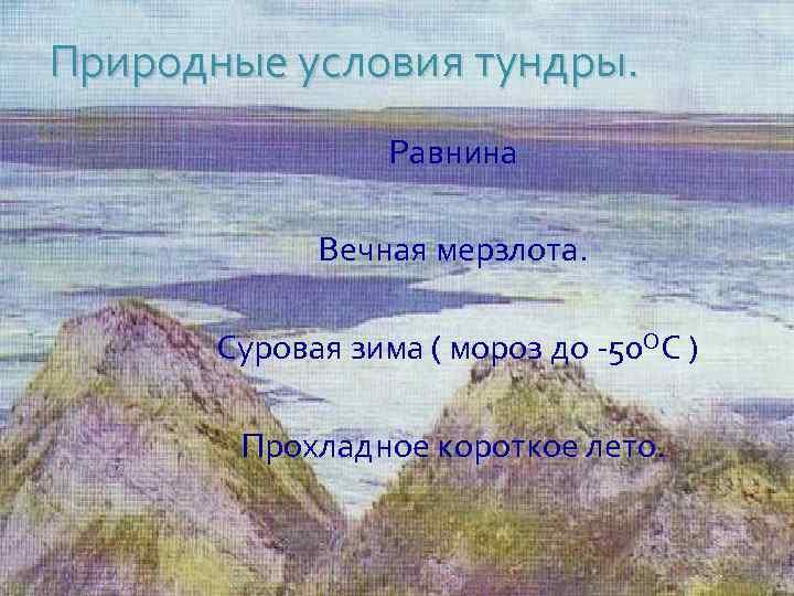 Природные условия тундры. Равнина Вечная мерзлота. Суровая зима ( мороз до -50 ОС )
