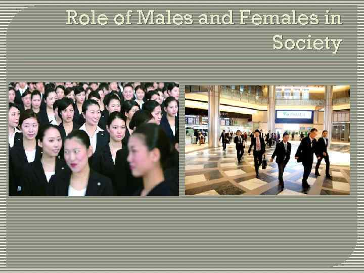 Role of Males and Females in Society