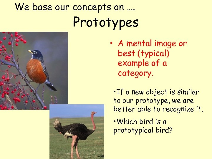 We base our concepts on …. Prototypes • A mental image or best (typical)