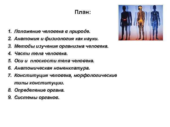 План: 1. Положение человека в природе. 2. Анатомия и физиология как науки. 3. Методы