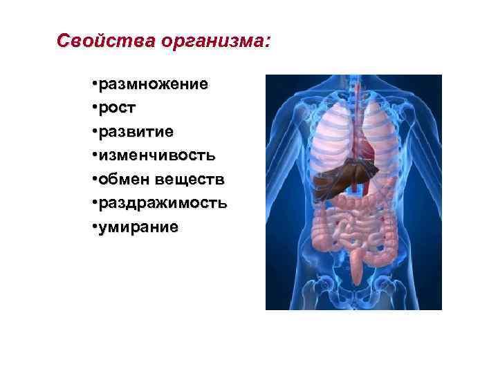 Свойства организма: • размножение • рост • развитие • изменчивость • обмен веществ •