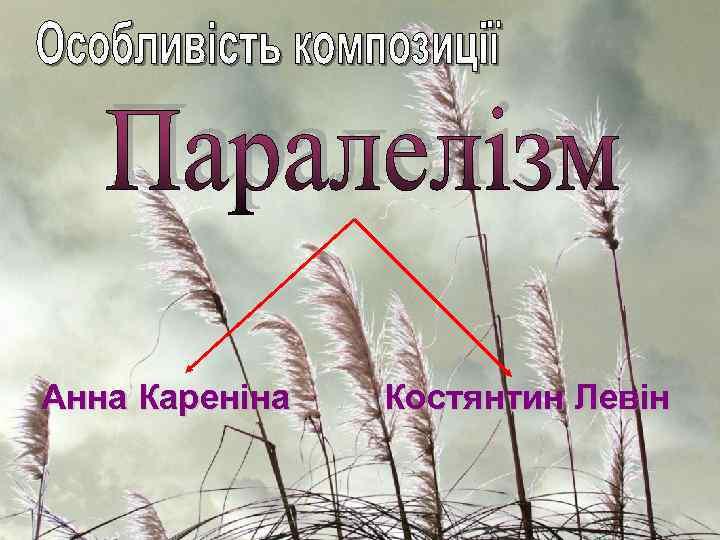Анна Кареніна Костянтин Левін