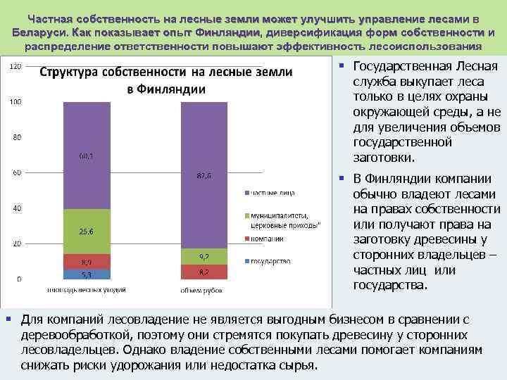 Частная собственность на лесные земли может улучшить управление лесами в Беларуси. Как показывает опыт
