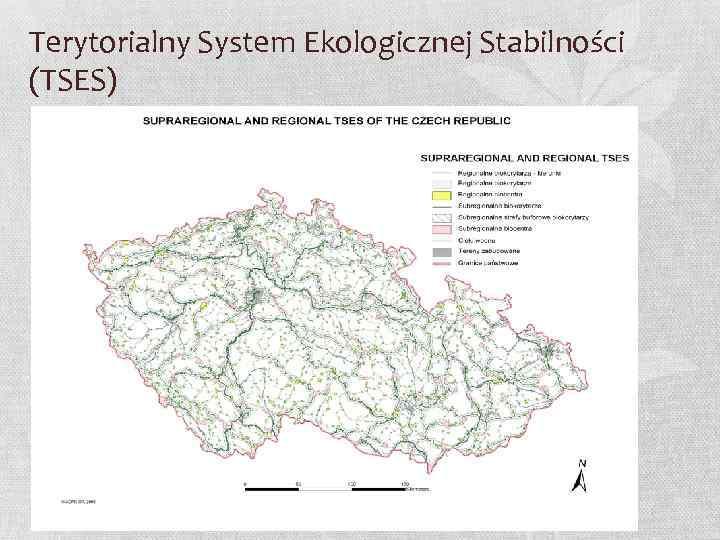 Terytorialny System Ekologicznej Stabilności (TSES)