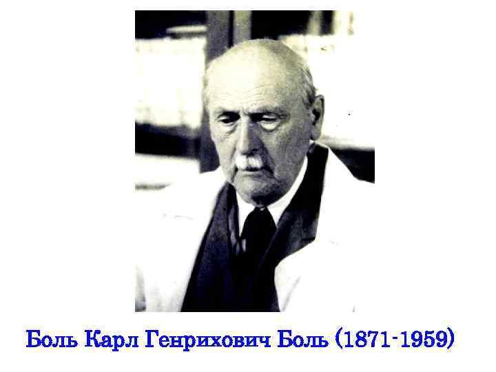 Боль Карл Генрихович Боль (1871 -1959)