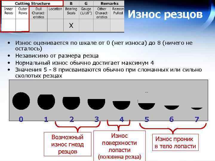 Износ резцов • Износ оценивается по шкале от 0 (нет износа) до 8 (ничего