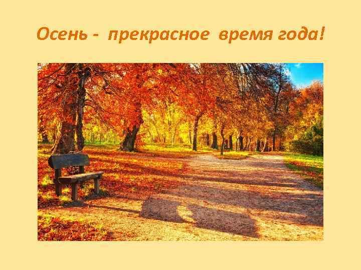 Осень - прекрасное время года!