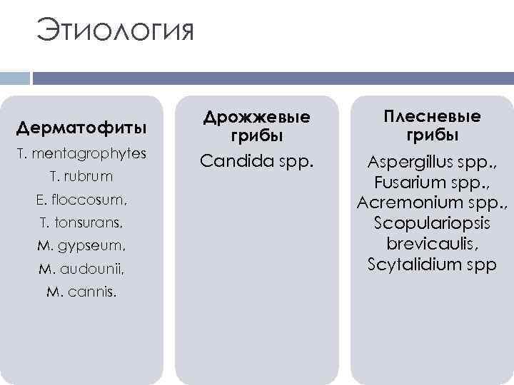 Этиология Дерматофиты Т. mentagrophytes Т. rubrum E. floccosum, Т. tonsurans, M. gypseum, M. audounii,