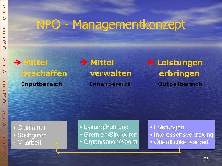 N P O B Ü R O NPO - Managementkonzept Mittel beschaffen Inputbereich •