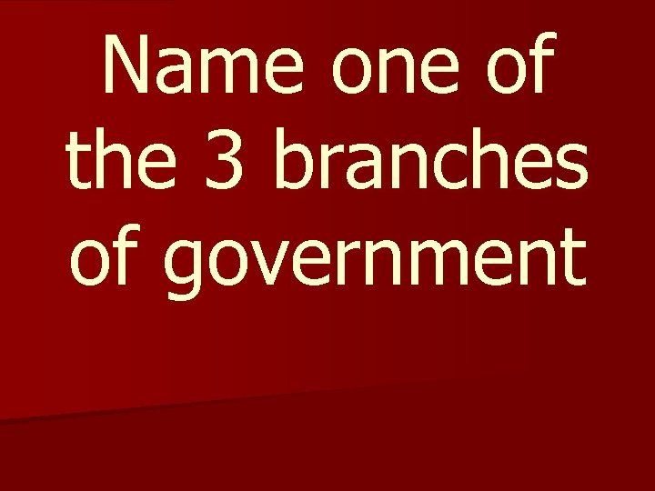 Name one of the 3 branches of government