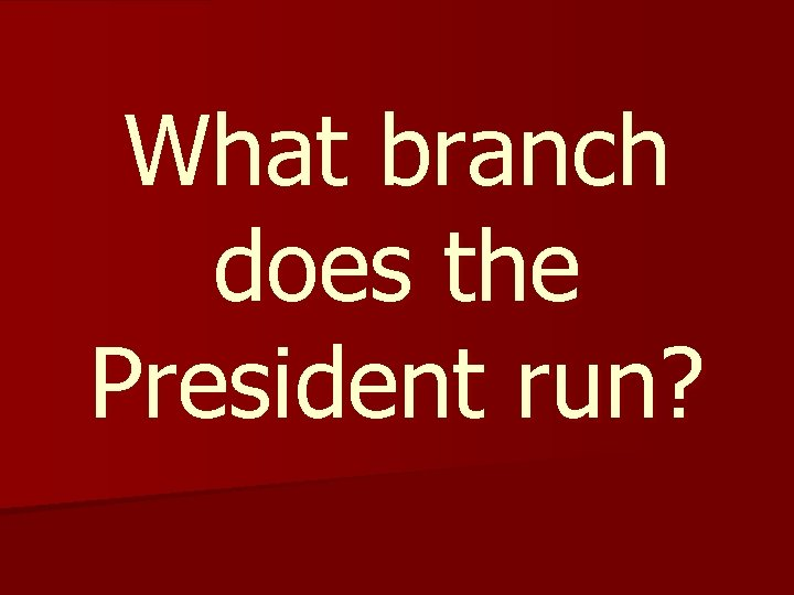 What branch does the President run?