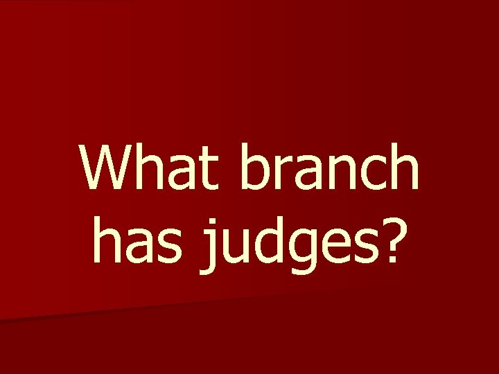 What branch has judges?