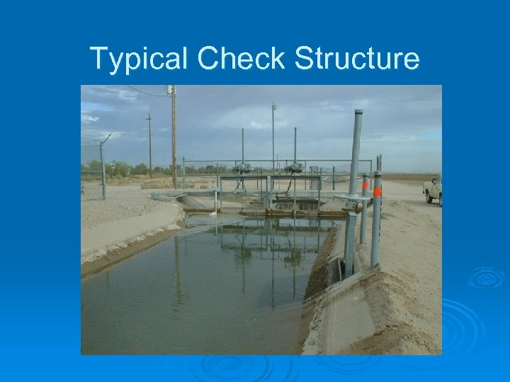 Typical Check Structure